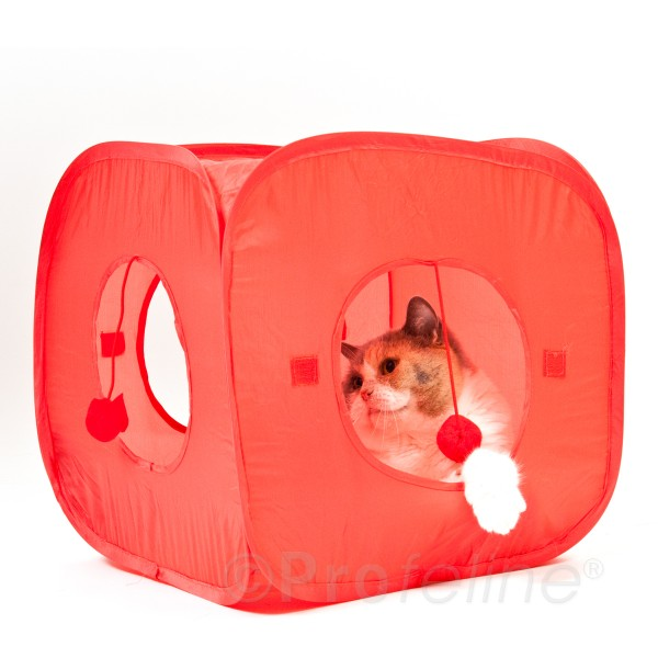 Cat Fun Tent! Pop open Cube