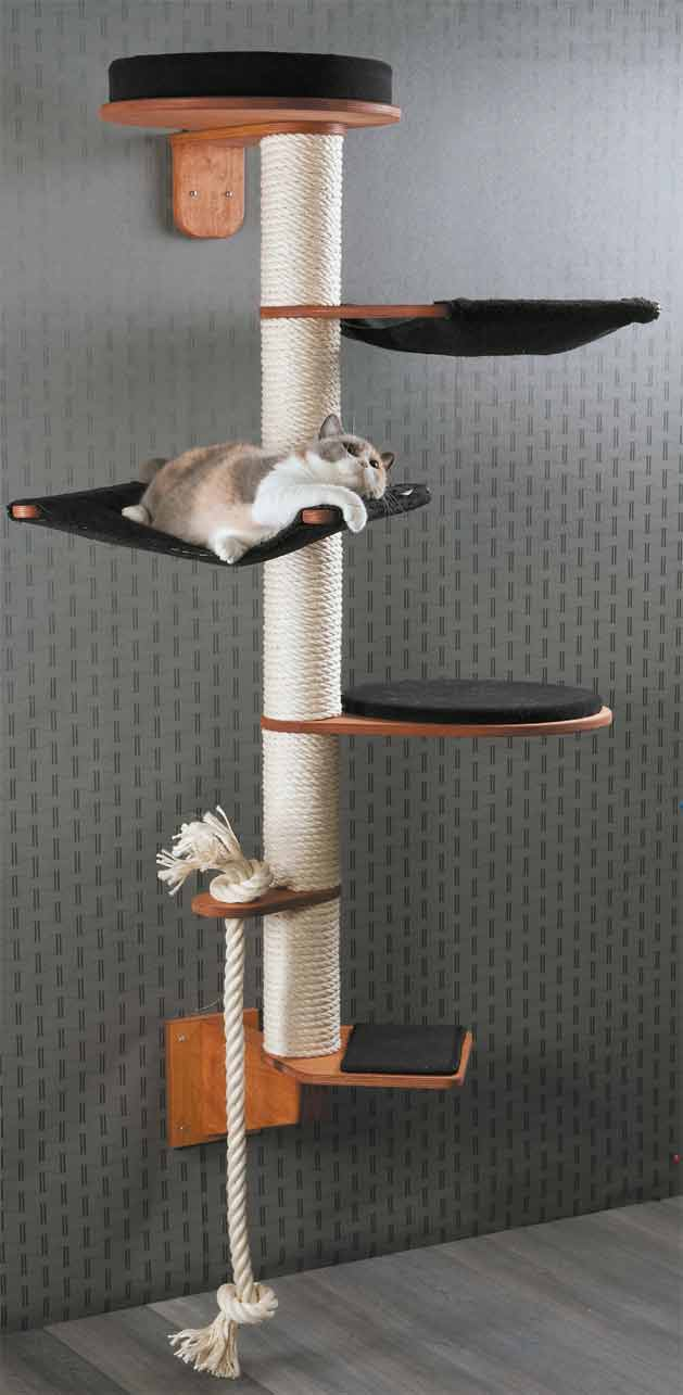 Wall Mounted Cat Tree Modell Wendelin Designed To Perfection Profeline Cat Supplies