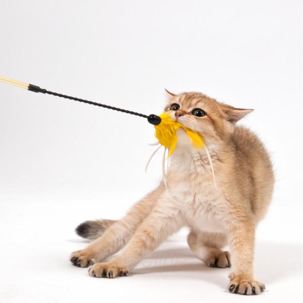 Cat Dangler - Feather Bouncer
