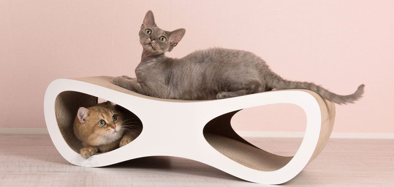 Miglio Design Cat Furniture
