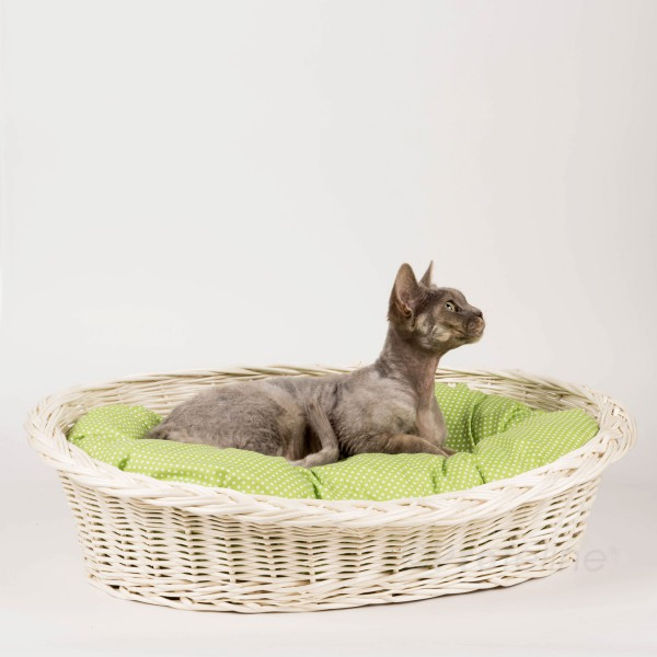 Cat basket creme, pillow green