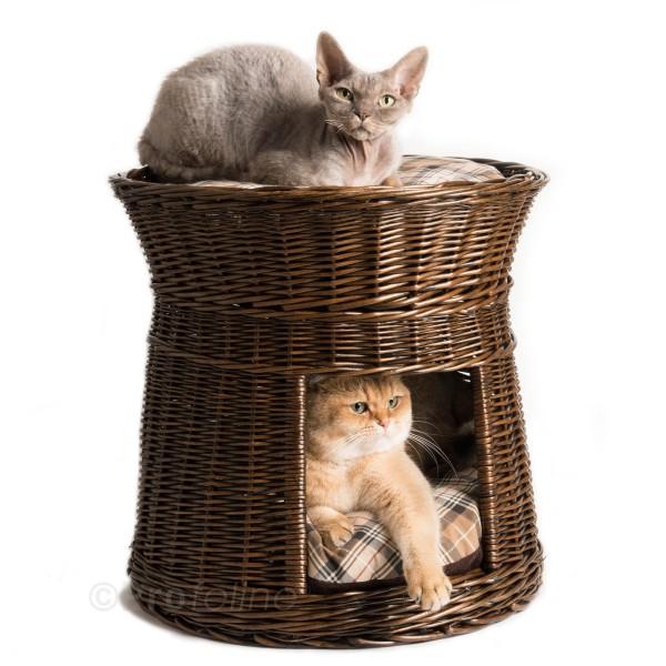 Cat Tower Brown