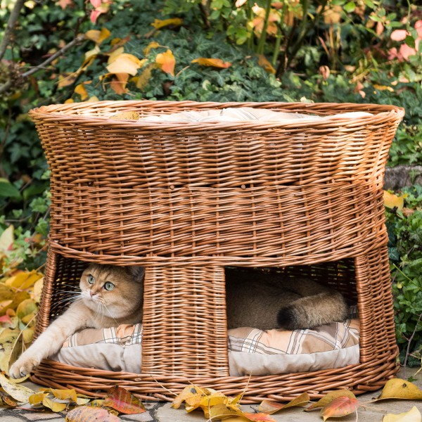 Katzenwohnwelt