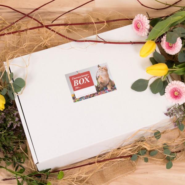 Surprise Cube Box