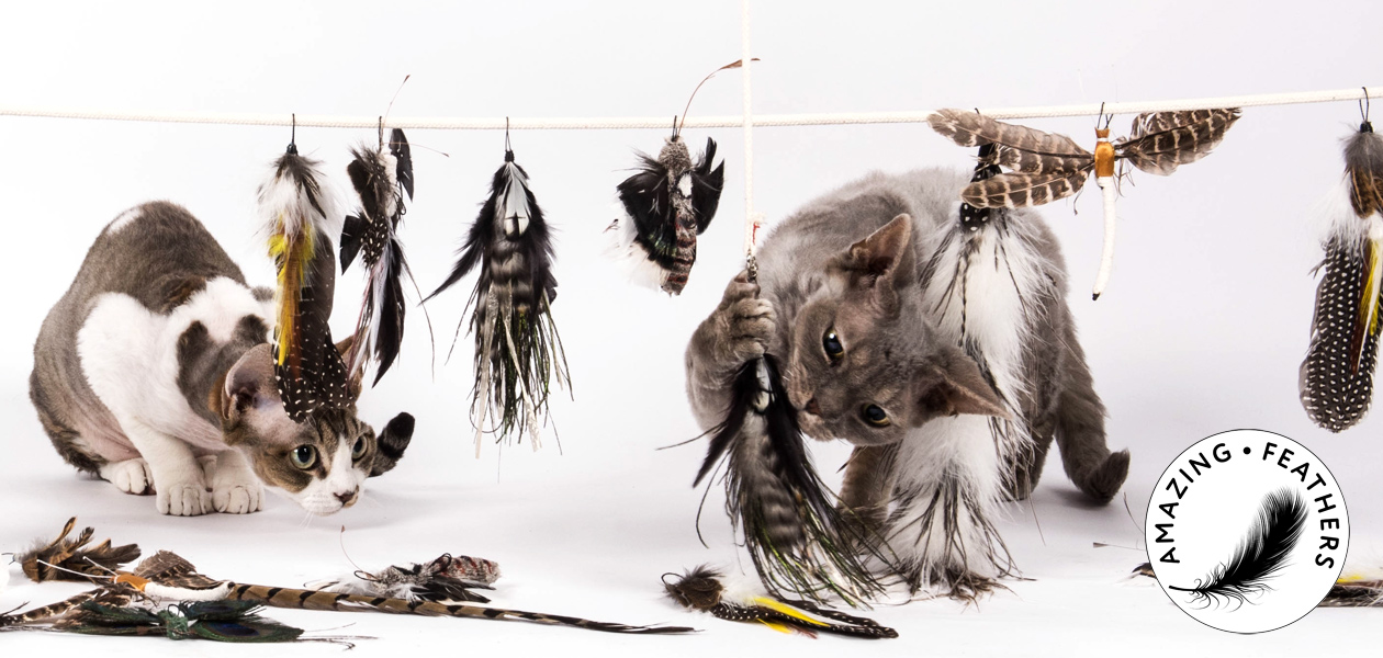 Amazing Feathers - attachments for cat rods