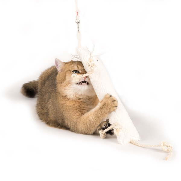 Profeline - CatNip Weasel Attachment