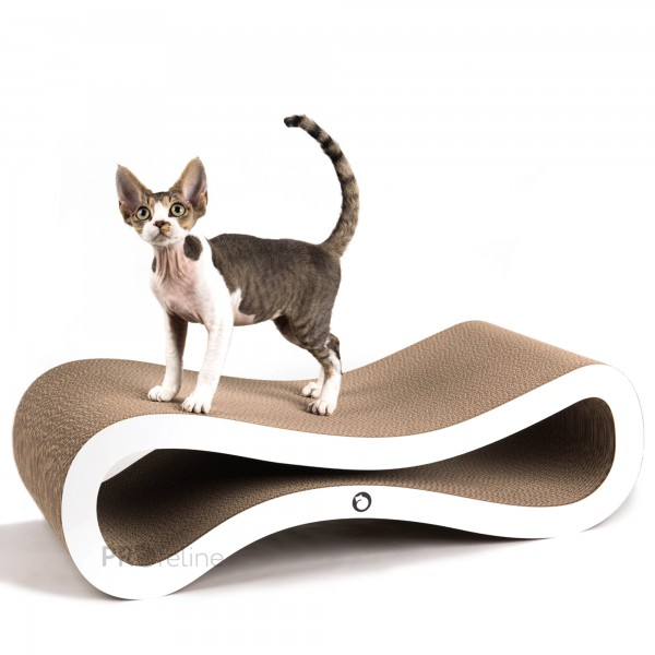cat-on Scratching Lounge Infinity