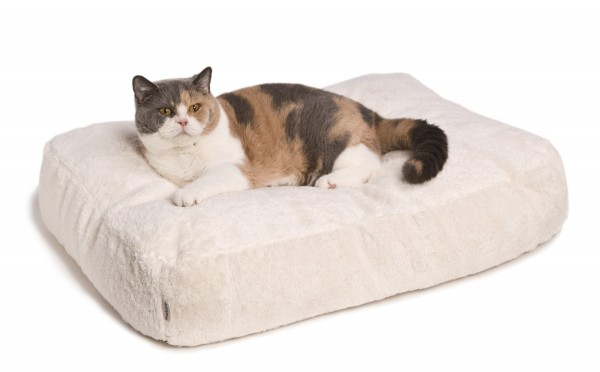 Cat Bed Feline Futon