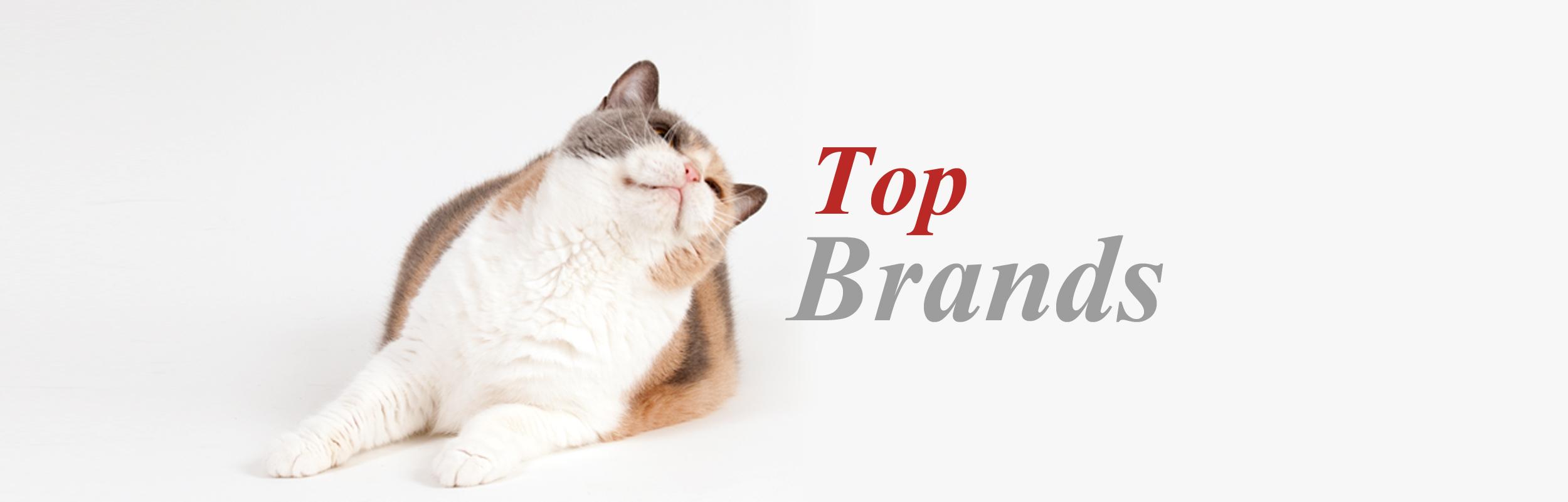 Top brands profeline cat supplies for Jackson galaxy da bird