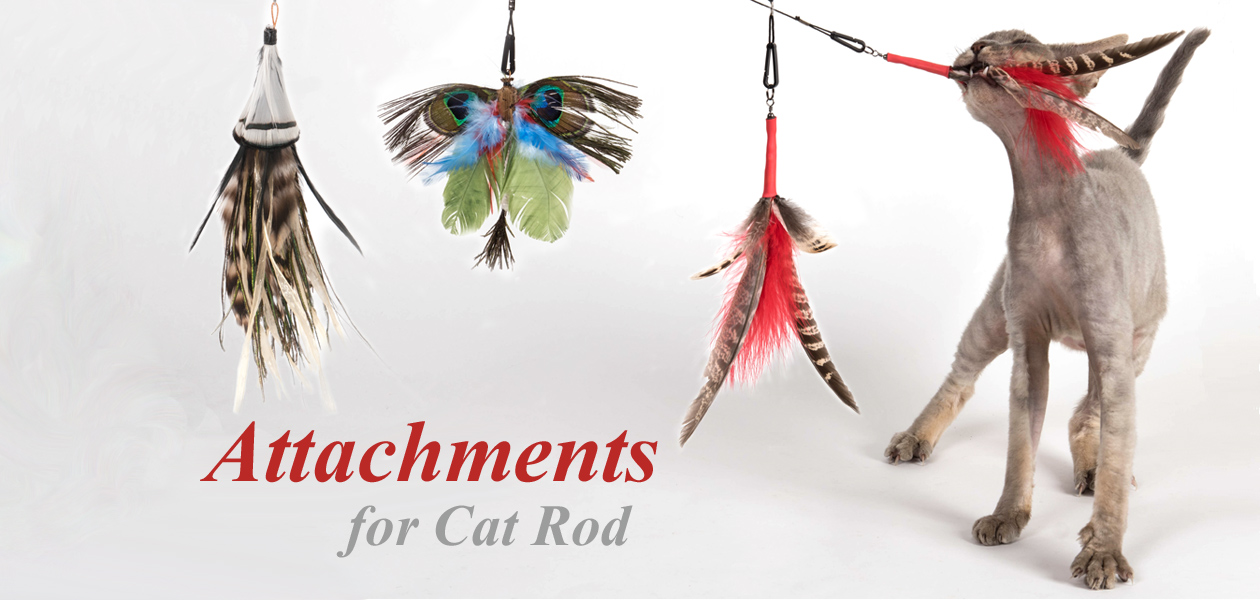 Attachments for Cat Rod