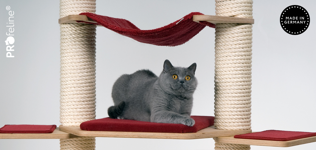 Cat Tree Lounger Platforms
