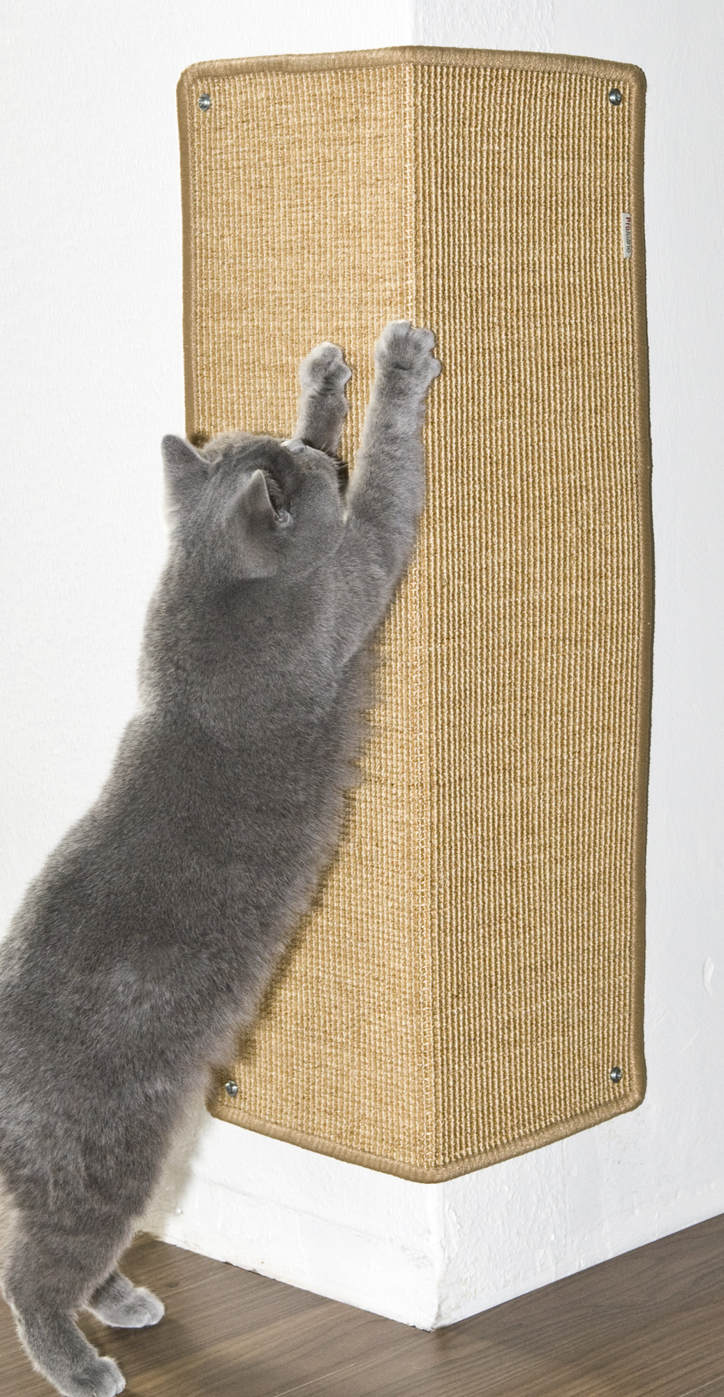 Corner Scratching Mat Xxl Scratching Post And Mats Cat