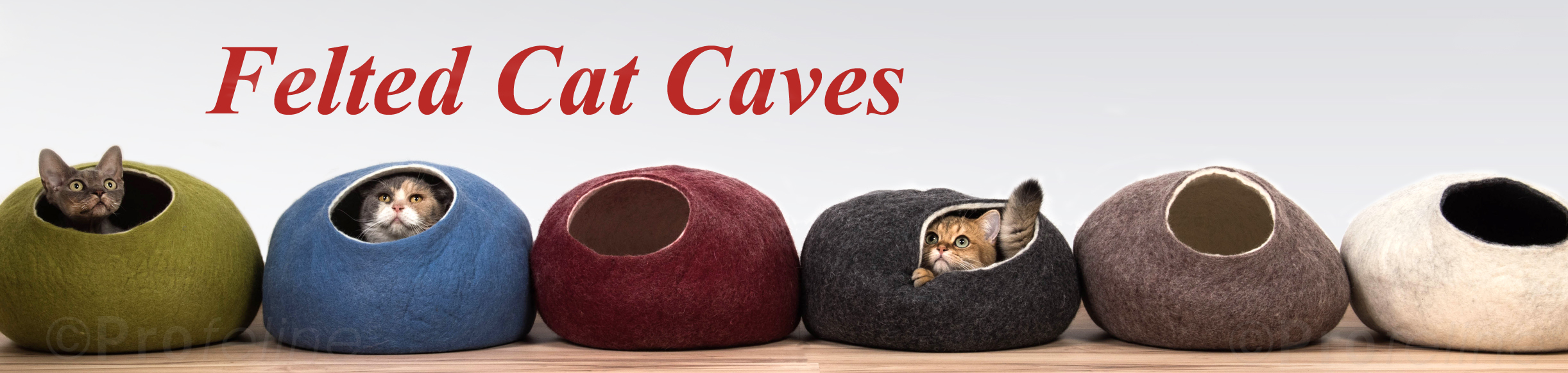 Cat caves and cat tunnels