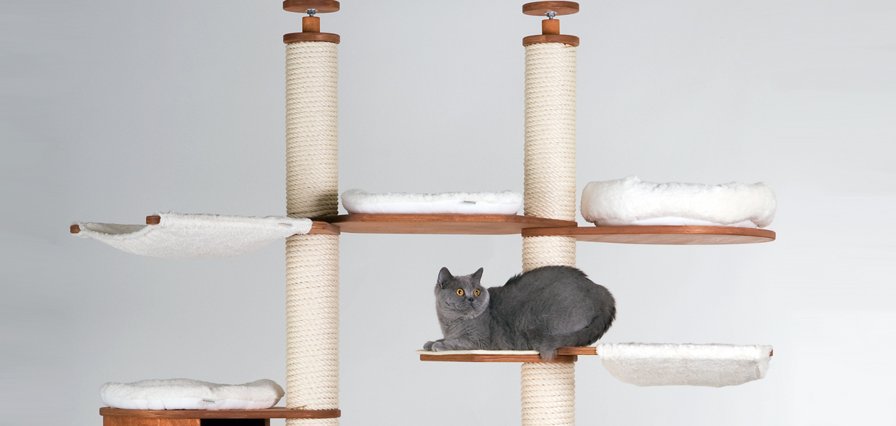 Floor to Ceiling Cat Trees